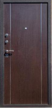 Двери 006 вид сзади