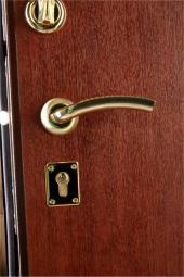 Двери МД-01 медь